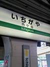 Ichigayaita