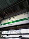 Shinagawaita_2