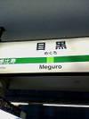 Meguroita_2