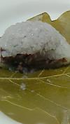 Kashikoshihalf